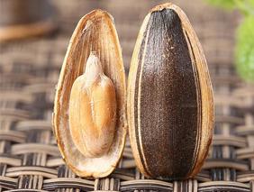 瓜子种类多 各有不同的营养价值